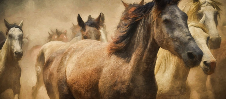 horse drawing painting