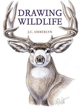 drawing wildlife book