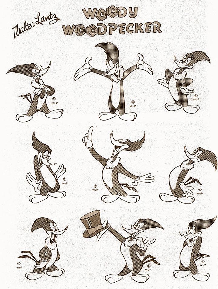 woody the woodpecker model sheet
