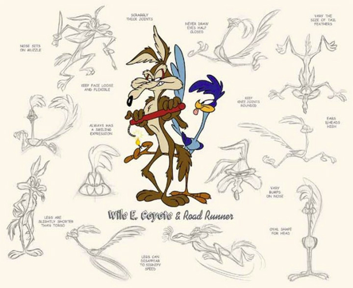 wile e coyote roadrunner model sheet