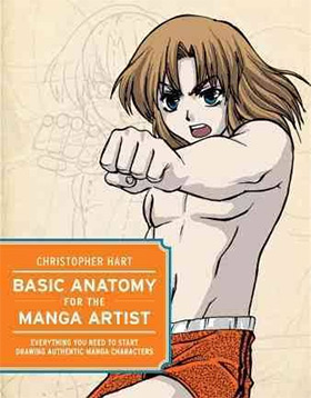 basic anatomy artist