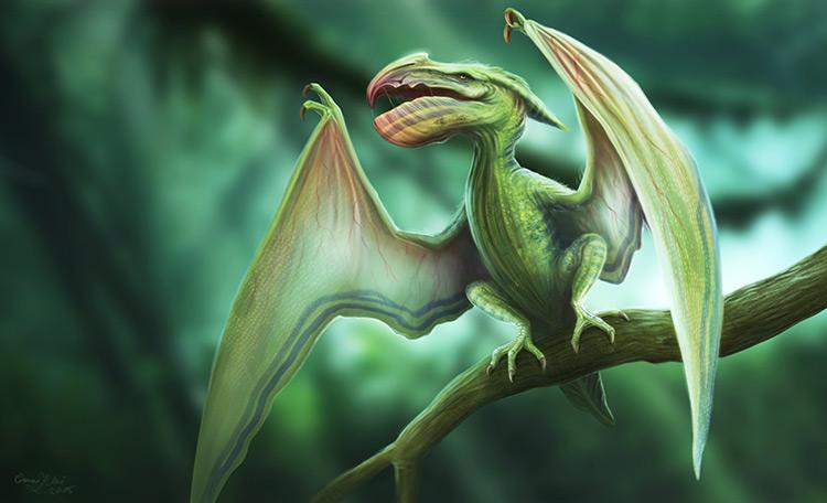 dinosaur pterodactyl creature art character illustration