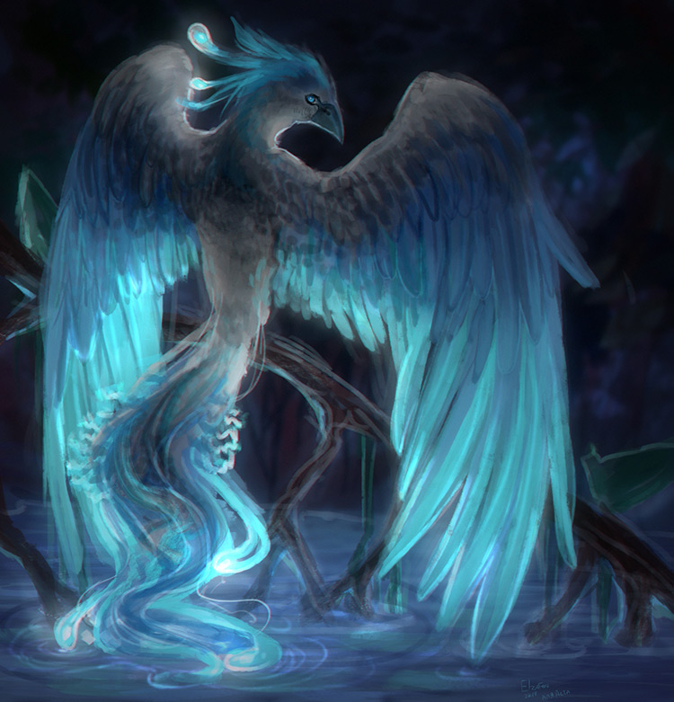 phoenix fantasy creatures lake blue drawing