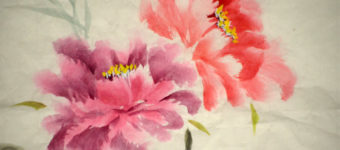 Best Books On Drawing & Painting Flowers