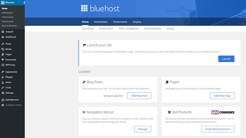bluehost mojo plugin launch website live
