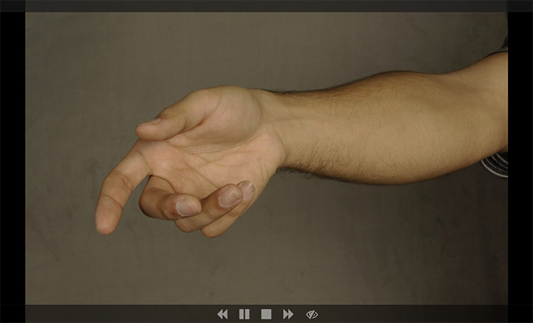 Line of Action hands practice