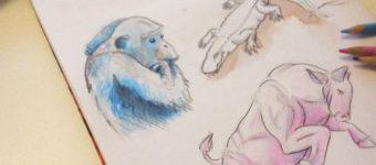 Online Illustration Courses & Digital Classes That'll Make You A Master Illustrator