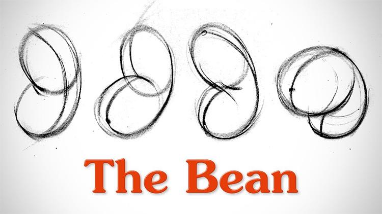 proko bean drawing video