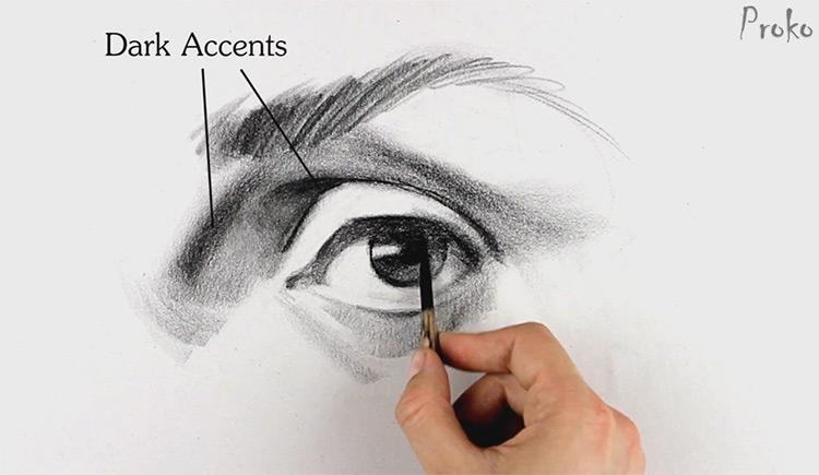 proko portrait eye drawing