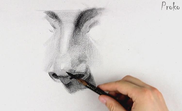 drawing nose portrait fundamentals