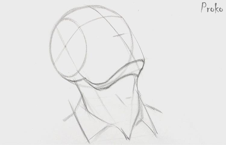 portrait drawing proko heads
