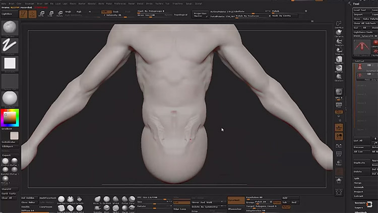 organic modelling zbrush video