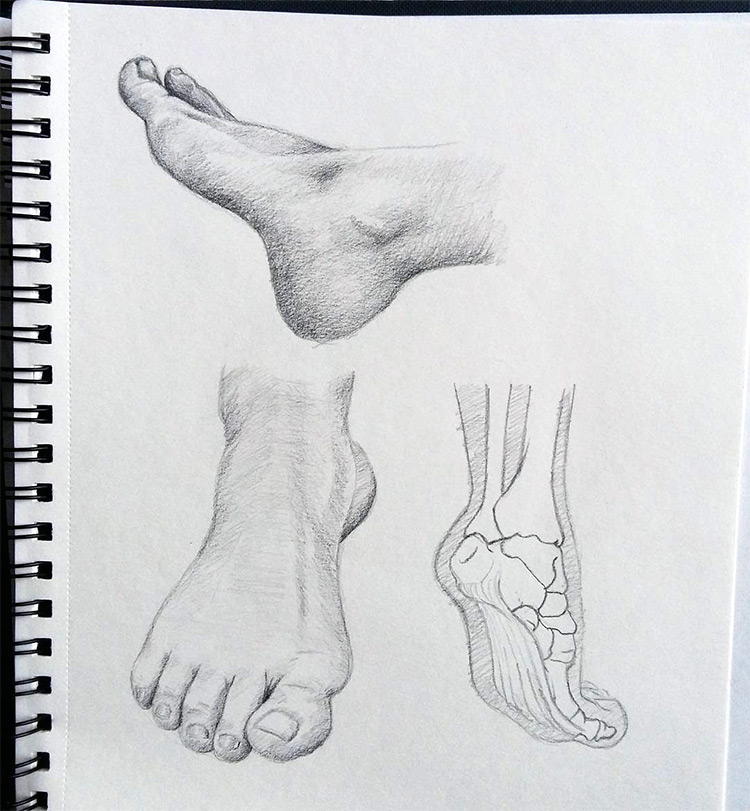 Feet skin and bone drawings