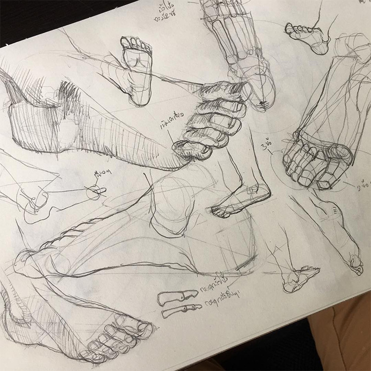 Pencil drawings of feet at different sizes